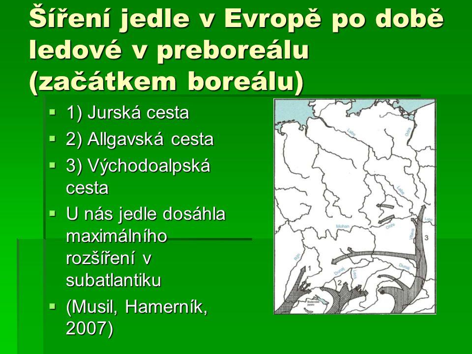 Šíření jedle v Evropě po době ledové v preboreálu (začátkem boreálu)  1) Jurská cesta  2) Allgavská cesta  3) Východoalpská cesta  U nás jedle dos