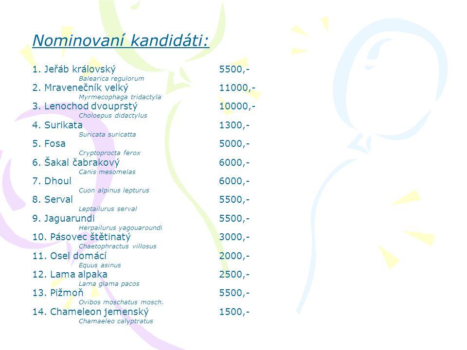 14. Chameleon jemenský Chamaeleo calyptratus Cena: 1500,- / rok