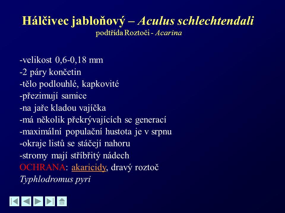 Hálčivec jabloňový – Aculus schlechtendali podtřída Roztoči - Acarina -velikost 0,6-0,18 mm -2 páry končetin -tělo podlouhlé, kapkovité -přezimují sam
