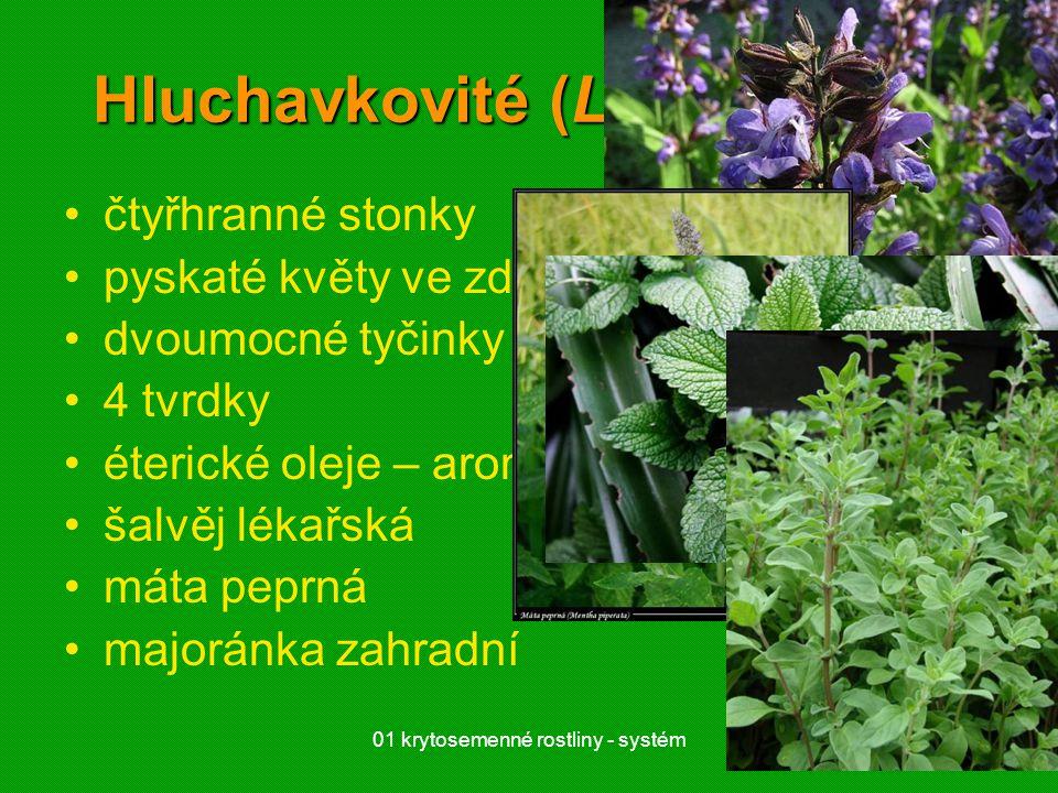 01 krytosemenné rostliny - systém19 Hluchavkovité (Laminaceae) čtyřhranné stonky pyskaté květy ve zdánlivých přeslenech dvoumocné tyčinky 4 tvrdky éte