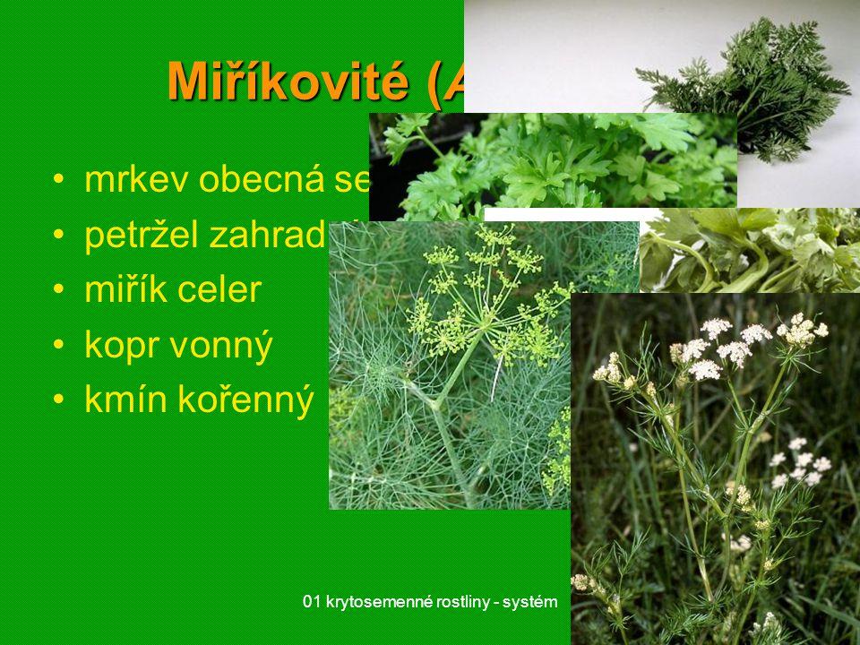 01 krytosemenné rostliny - systém27 Miříkovité (Apiaceae) mrkev obecná setá petržel zahradní miřík celer kopr vonný kmín kořenný