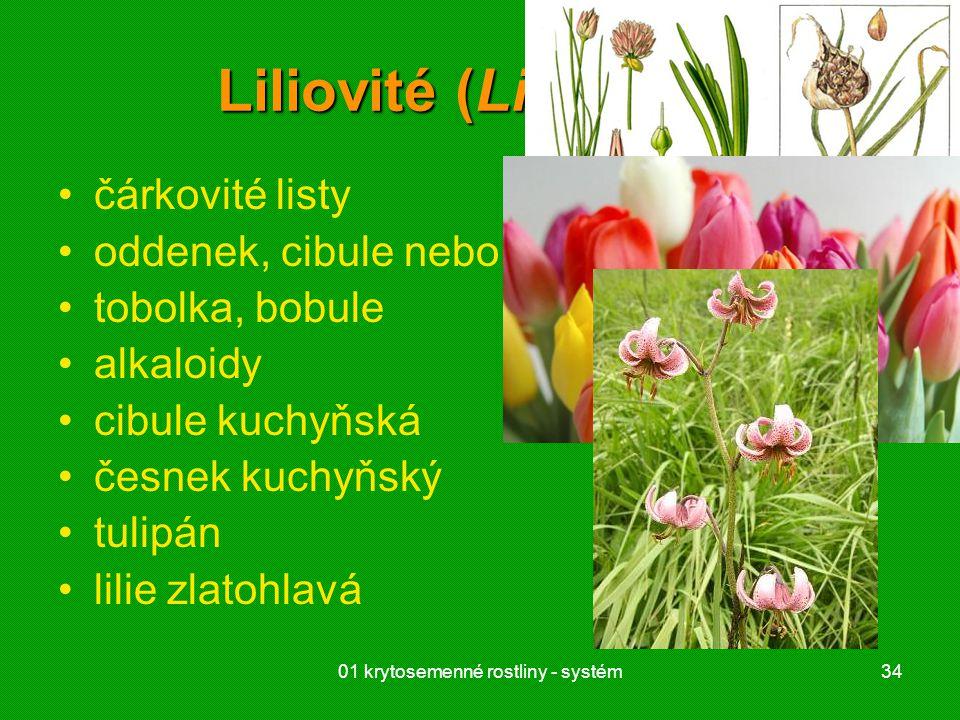 01 krytosemenné rostliny - systém34 Liliovité (Liliaceae) čárkovité listy oddenek, cibule nebo hlíza tobolka, bobule alkaloidy cibule kuchyňská česnek