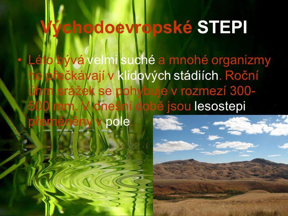 Východoevropské STEPI Léto bývá velmi suché a mnohé organizmy ho přečkávají v klidových stádiích. Roční úhrn srážek se pohybuje v rozmezí 300- 500 mm.