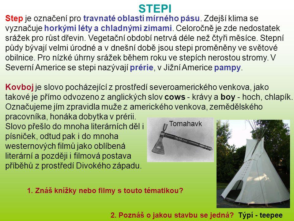 STEPI Step je označení pro travnaté oblasti mírného pásu. Zdejší klima se vyznačuje horkými léty a chladnými zimami. Celoročně je zde nedostatek sráže
