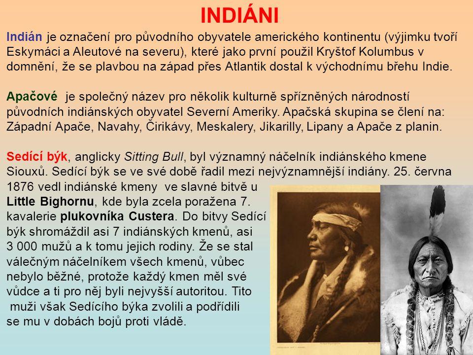 INDIÁNI Indián je označení pro původního obyvatele amerického kontinentu (výjimku tvoří Eskymáci a Aleutové na severu), které jako první použil Kryšto