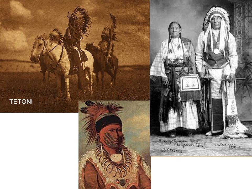 Sysel, stepní svišť, křeček, zajíc, krtek, vlk, kočka stepní, rys karakal, orel stepní, sup, bažant a jeřáb, bizon (dnes přežívají v rezervacích), kojot prériový, psoun prériový, mravenečník, tetřívek prériový a sova zemní.