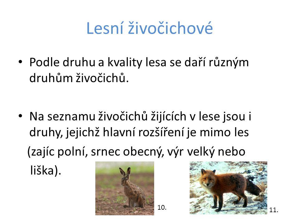 Lesní živočichové Podle druhu a kvality lesa se daří různým druhům živočichů. Na seznamu živočichů žijících v lese jsou i druhy, jejichž hlavní rozšíř
