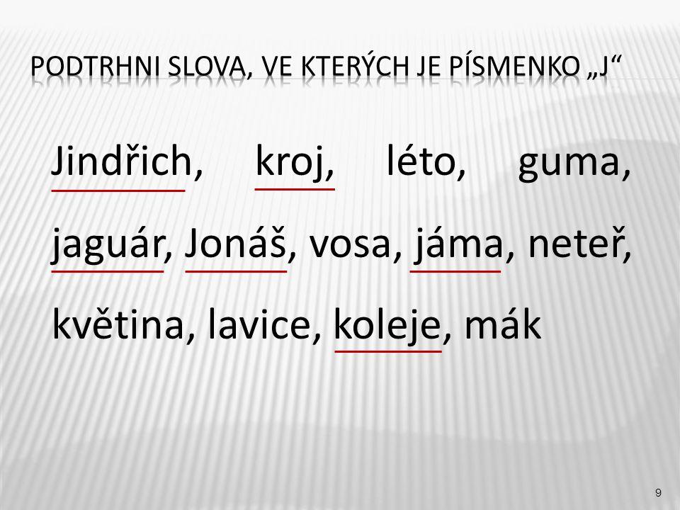 9 Jindřich, kroj, léto, guma, jaguár, Jonáš, vosa, jáma, neteř, květina, lavice, koleje, mák