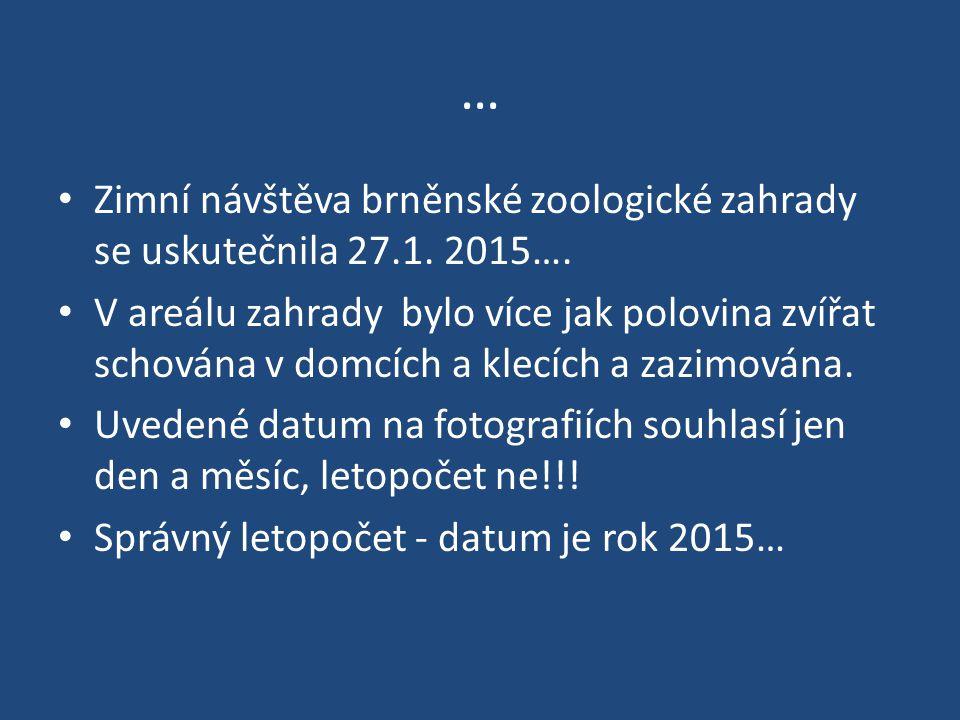 … Zimní návštěva brněnské zoologické zahrady se uskutečnila 27.1.