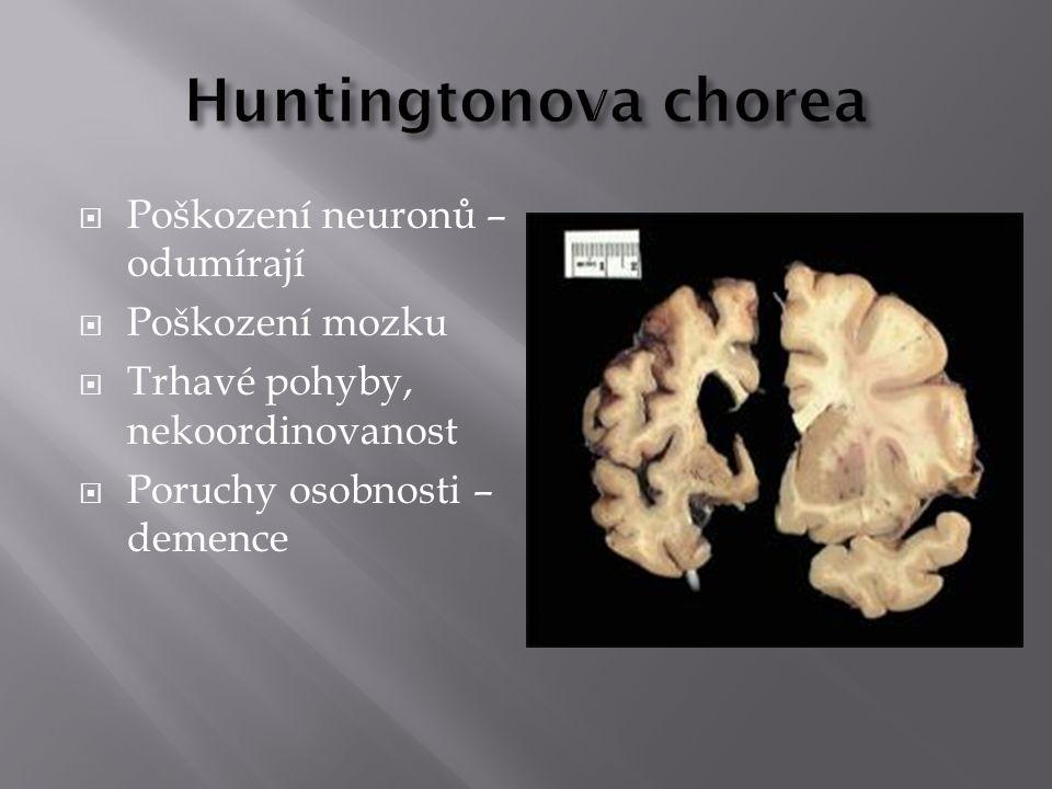  Poškození neuronů – odumírají  Poškození mozku  Trhavé pohyby, nekoordinovanost  Poruchy osobnosti – demence