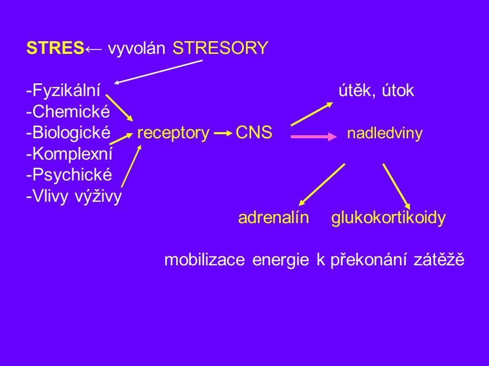STRES - 3 fáze Šok → ↓glukózy, ↓ leukocytů, deprese ↓krevní tlak, zblednutí 1.Poplachová reakce Protišok → ↑adrenalín, ↑ glukokortikoidy, ↑glukózy, ↑mastných kyselin,↑fagocytóza 1.Stádium odolnosti → přizpůsobení zátěži, ↓brzlíku, mízních uzlin, hypertrofie kůry nadledvin 3.