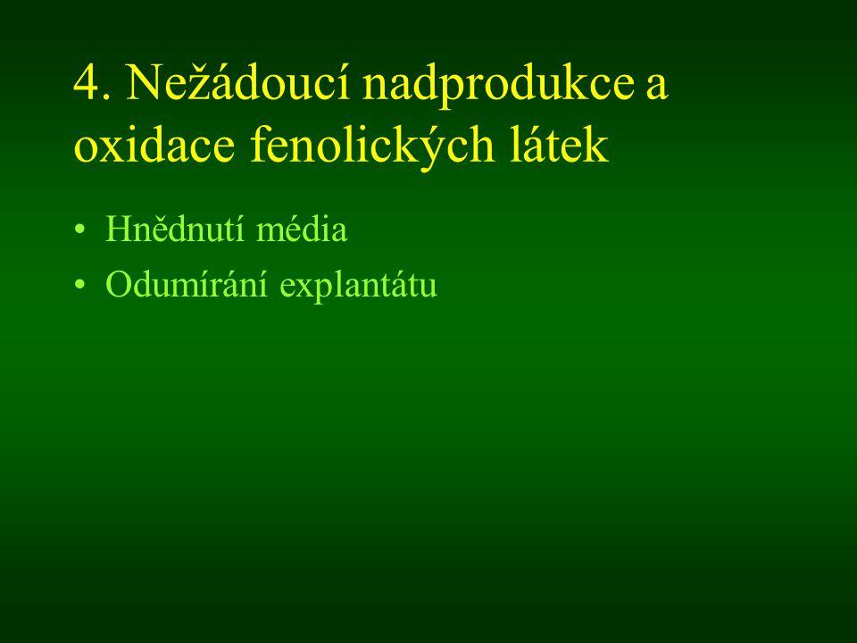 4. Nežádoucí nadprodukce a oxidace fenolických látek Hnědnutí média Odumírání explantátu