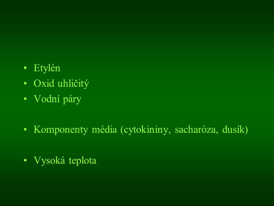 Etylén Oxid uhličitý Vodní páry Komponenty média (cytokininy, sacharóza, dusík) Vysoká teplota