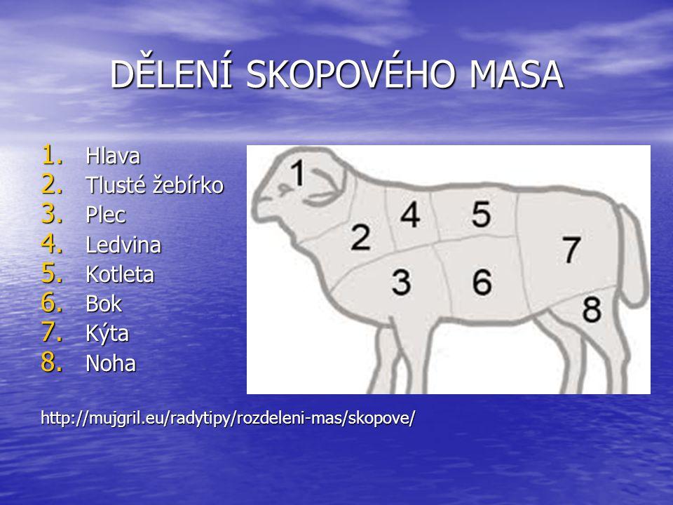 Zdroj: Hrabě, J.