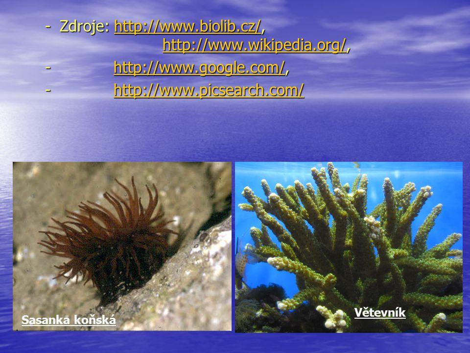 -Zdroje: http://www.biolib.cz/, http://www.wikipedia.org/, http://www.biolib.cz/http://www.wikipedia.org/http://www.biolib.cz/http://www.wikipedia.org/ - http://www.google.com/, http://www.google.com/ - http://www.picsearch.com/ http://www.picsearch.com/ Sasanka koňská Větevník