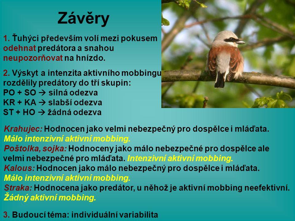 Závěry 3. Budoucí téma: individuální variabilita 1. Ťuhýci především volí mezi pokusem odehnat predátora a snahou neupozorňovat na hnízdo. 2. Výskyt a