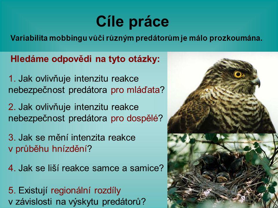 Cíle práce Variabilita mobbingu vůči různým predátorům je málo prozkoumána. 1. Jak ovlivňuje intenzitu reakce nebezpečnost predátora pro mláďata? 2. J