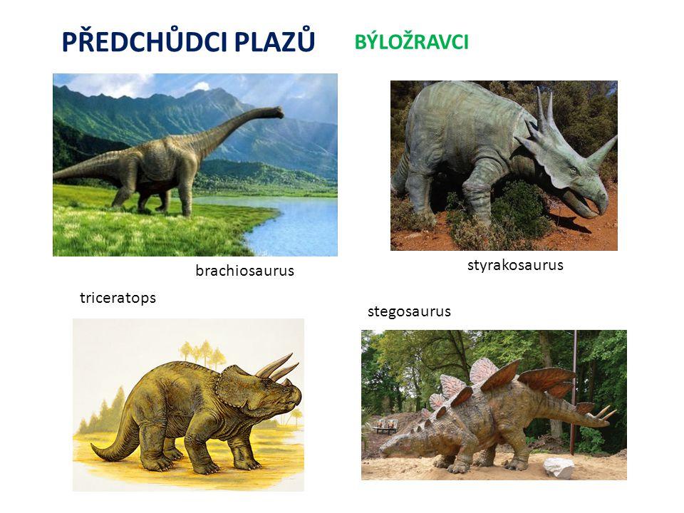 PŘEDCHŮDCI PLAZŮ BÝLOŽRAVCI triceratops brachiosaurus stegosaurus styrakosaurus