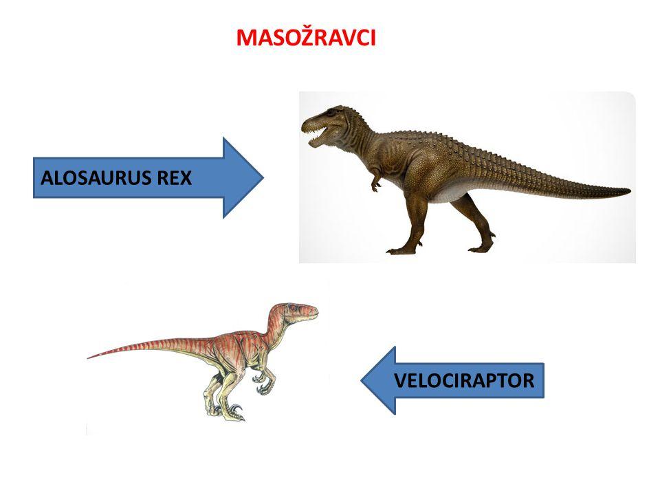 MASOŽRAVCI VELOCIRAPTOR ALOSAURUS REX
