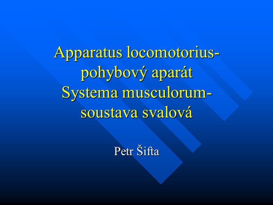 Apparatus locomotorius- pohybový aparát Systema musculorum- soustava svalová Petr Šifta