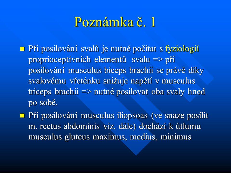 Poznámka č. 1 Při posilování svalů je nutné počítat s fyziologií proprioceptivních elementů svalu => při posilování musculus biceps brachii se právě d