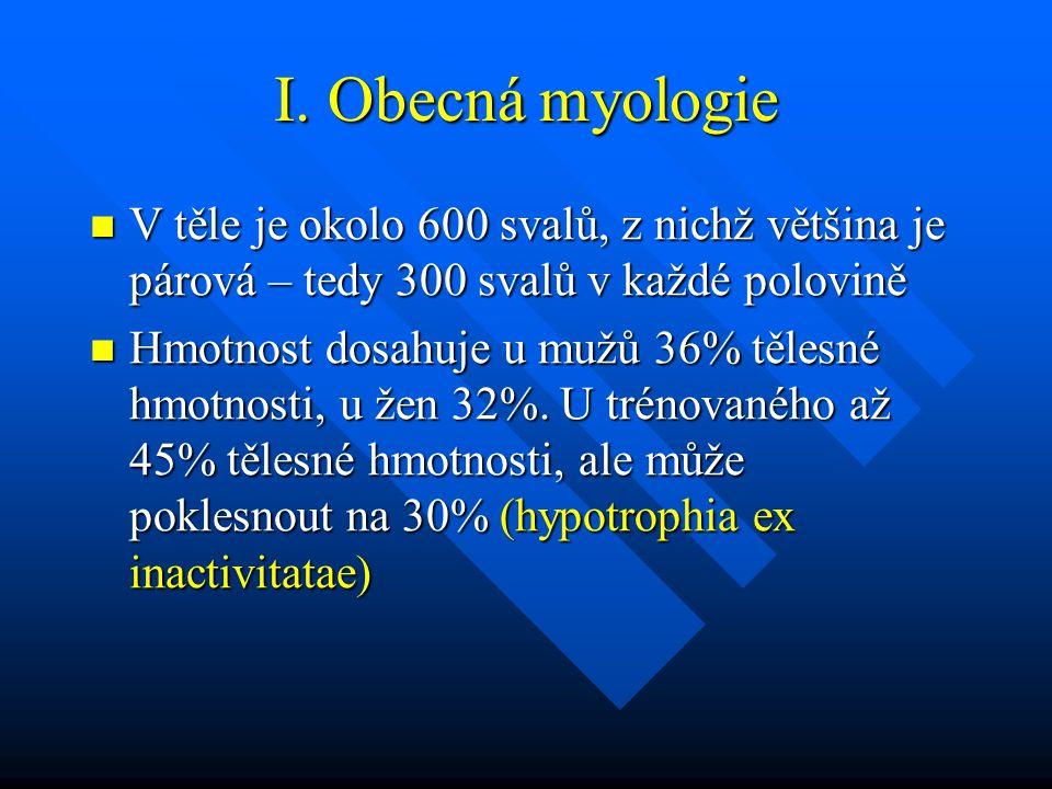 I. Obecná myologie V těle je okolo 600 svalů, z nichž většina je párová – tedy 300 svalů v každé polovině V těle je okolo 600 svalů, z nichž většina j