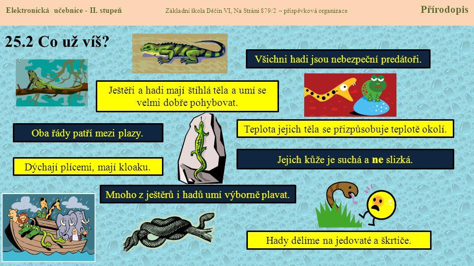 25.3 Co se dozvíme o ještěrech.Elektronická učebnice - II.