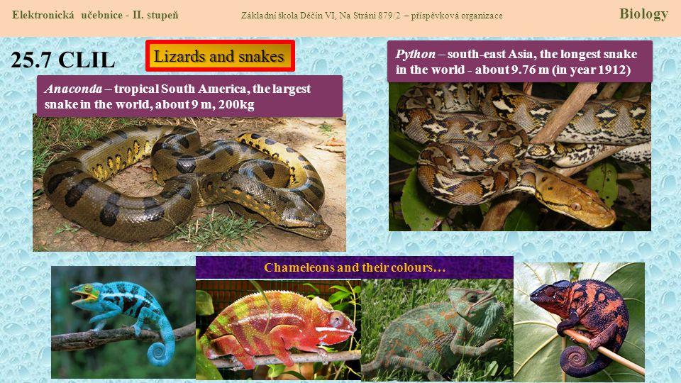 25.7 CLIL Elektronická učebnice - II. stupeň Základní škola Děčín VI, Na Stráni 879/2 – příspěvková organizace Biology Lizards and snakes Anaconda – t