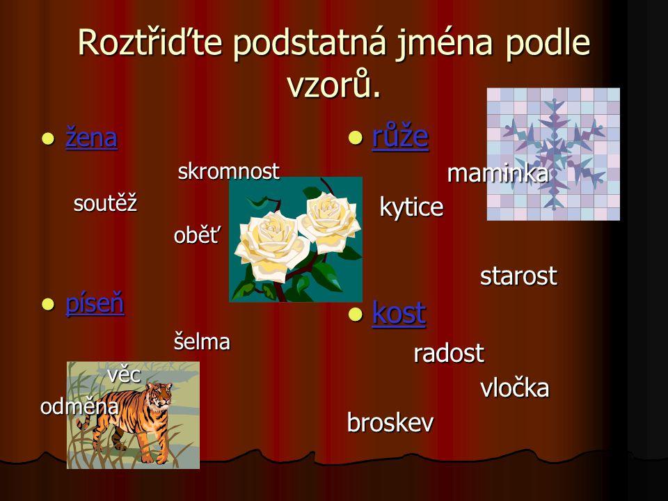 Roztřiďte podstatná jména podle vzorů. žena skromnost soutěž oběť píseň šelma věc odměna růže maminka kytice starost kost radost vločka broskev