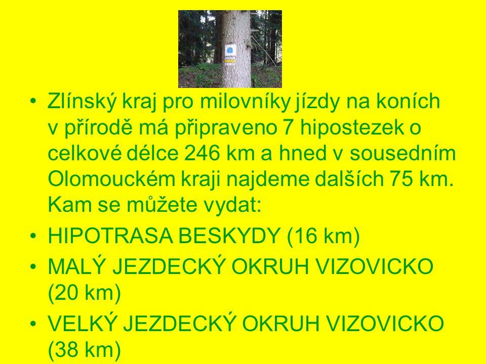 Zlínský kraj pro milovníky jízdy na koních v přírodě má připraveno 7 hipostezek o celkové délce 246 km a hned v sousedním Olomouckém kraji najdeme dalších 75 km.