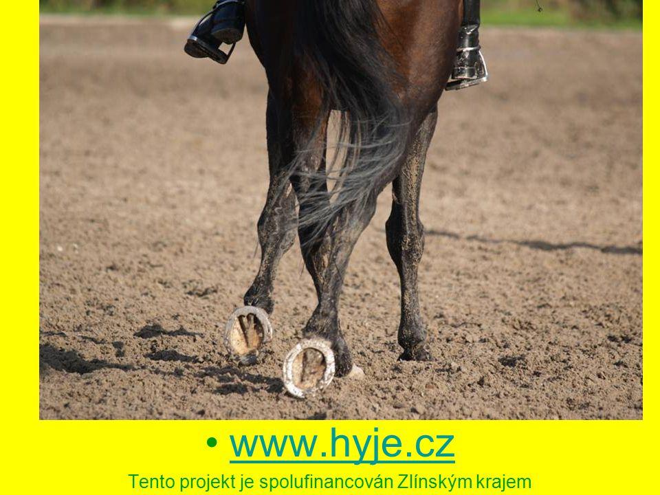www.hyje.cz Tento projekt je spolufinancován Zlínským krajem