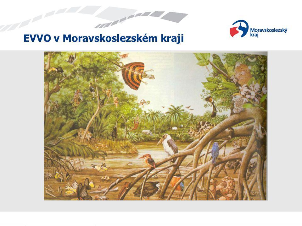 EVVO v Moravskoslezském kraji