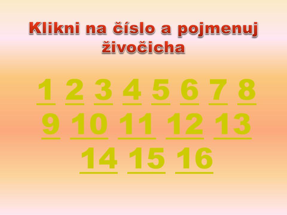 11 2 3 4 5 6 7 8 9 10 11 12 13 14 15 162345678 910111213 141516