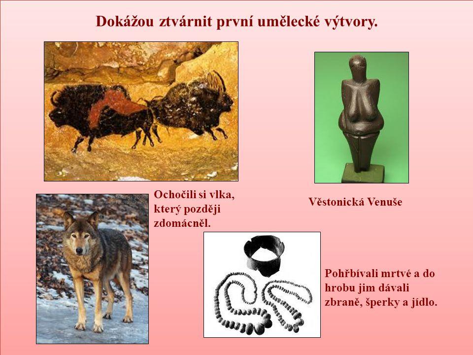 Dokážou ztvárnit první umělecké výtvory. Ochočili si vlka, který později zdomácněl. Věstonická Venuše Pohřbívali mrtvé a do hrobu jim dávali zbraně, š