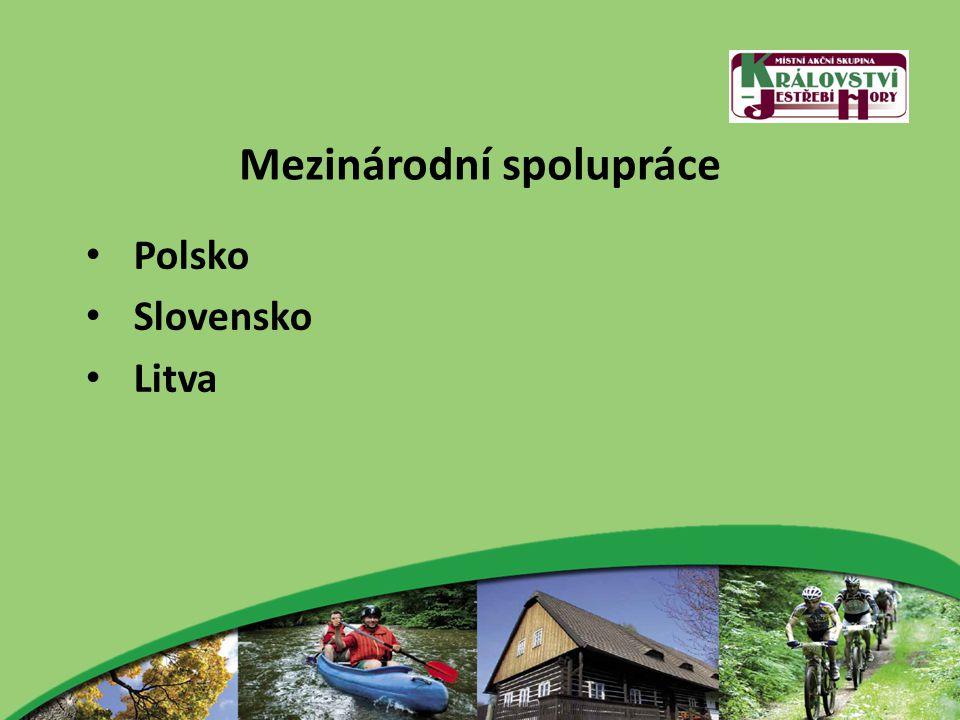 Mezinárodní spolupráce Polsko Slovensko Litva