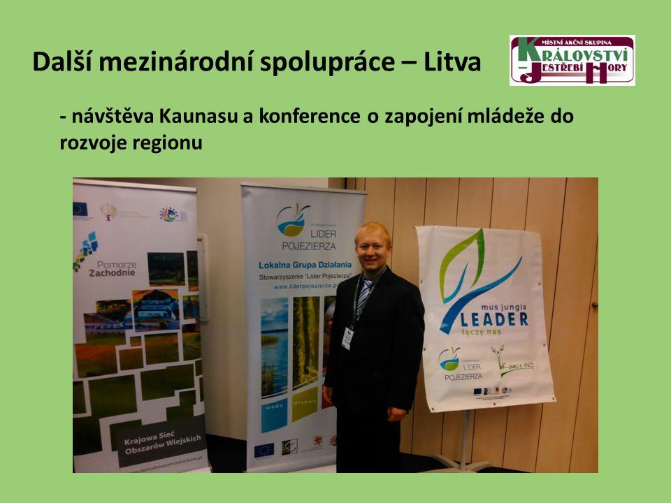 Další mezinárodní spolupráce – Litva - návštěva Kaunasu a konference o zapojení mládeže do rozvoje regionu