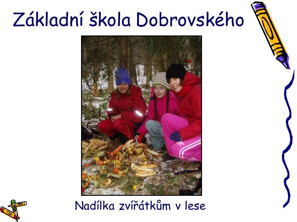Základní škola Dobrovského Nadílka zvířátkům v lese