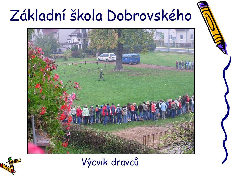 Základní škola Dobrovského Výcvik dravců