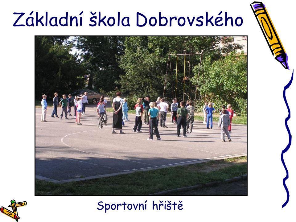 Základní škola Dobrovského Sportovní hřiště