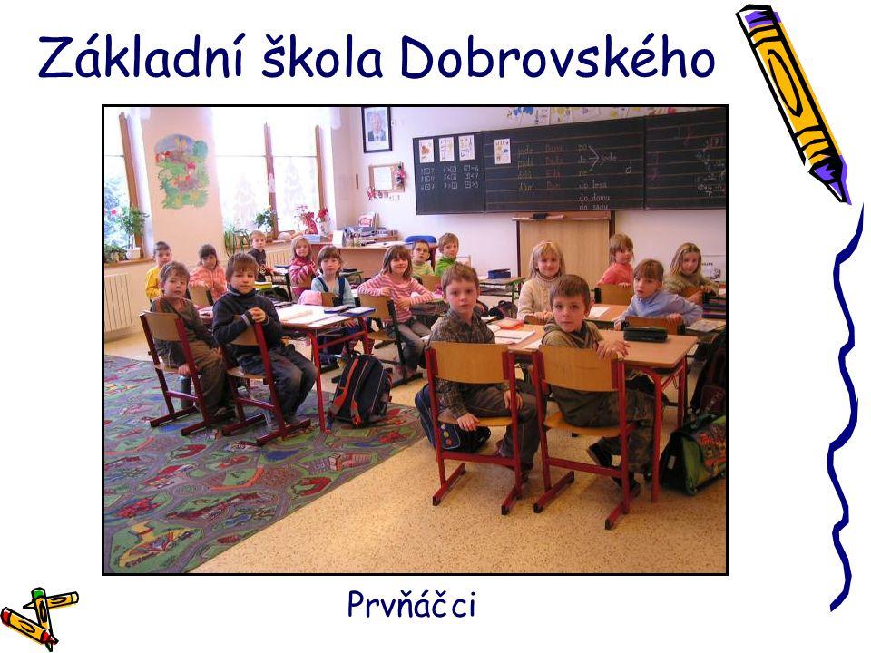 Základní škola Dobrovského Školní vlajka