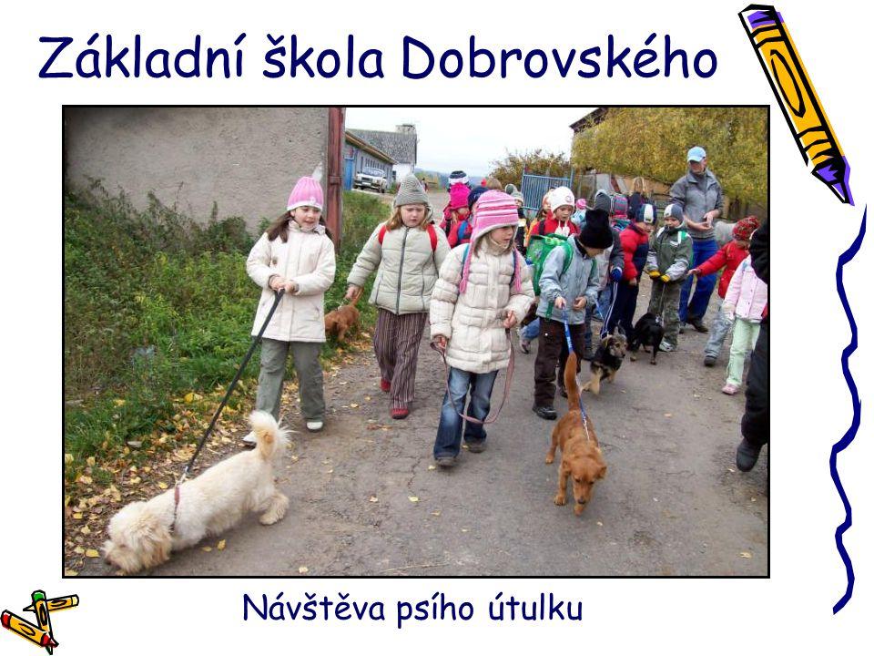 Základní škola Dobrovského Návštěva psího útulku