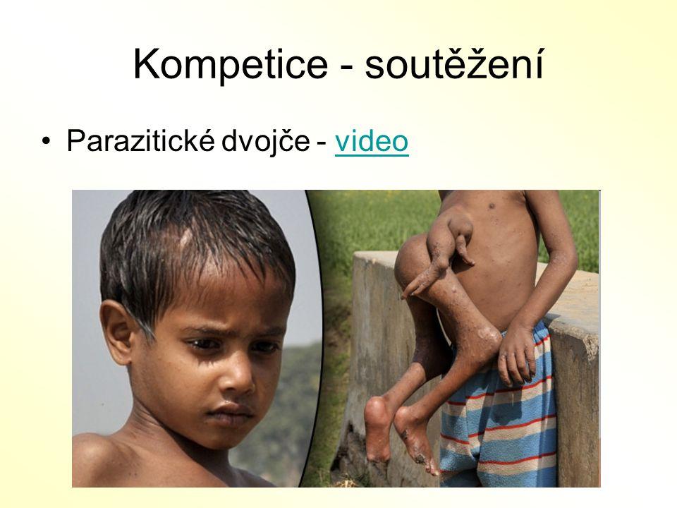 Kompetice - soutěžení Parazitické dvojče - videovideo