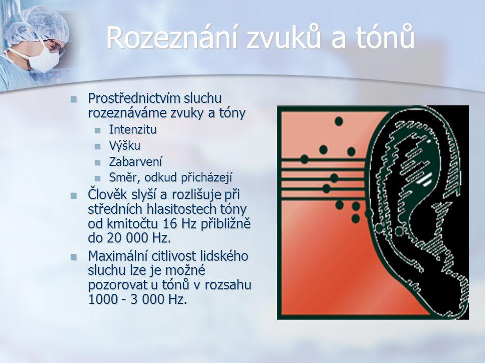 Rozeznání zvuků a tónů Prostřednictvím sluchu rozeznáváme zvuky a tóny Prostřednictvím sluchu rozeznáváme zvuky a tóny Intenzitu Intenzitu Výšku Výšku