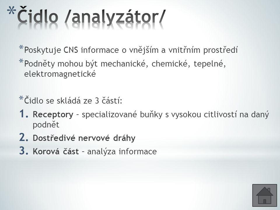 * Poskytuje CNS informace o vnějším a vnitřním prostředí * Podněty mohou být mechanické, chemické, tepelné, elektromagnetické * Čidlo se skládá ze 3 č