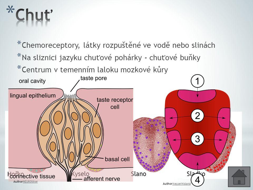 * Chemoreceptory, látky rozpuštěné ve vodě nebo slinách * Na sliznici jazyku chuťové pohárky - chuťové buňky * Centrum v temenním laloku mozkové kůry