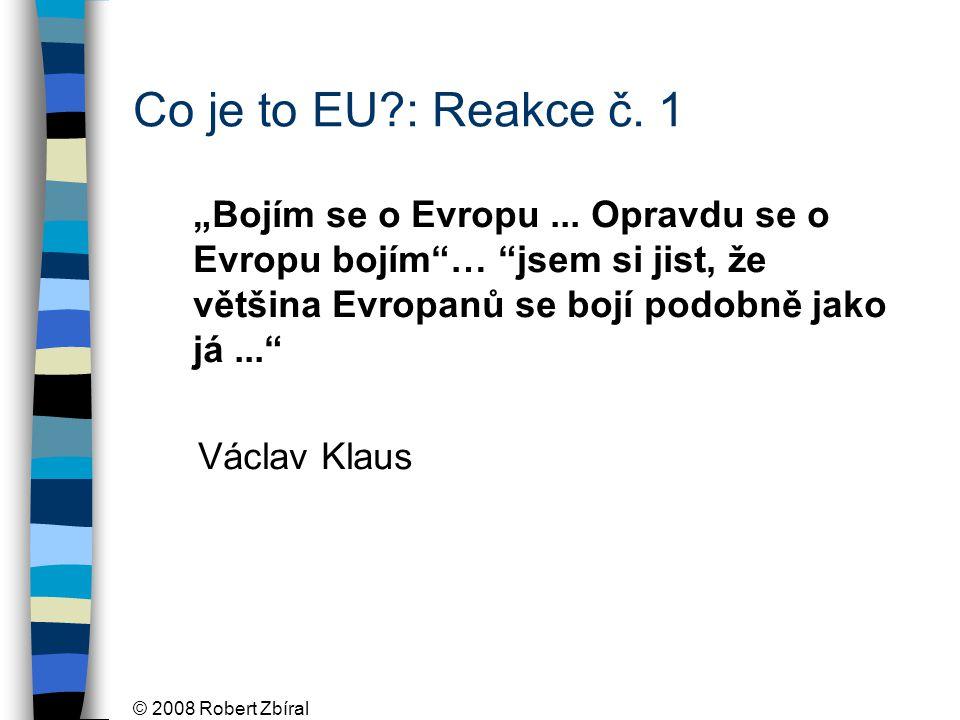 """© 2008 Robert Zbíral """"Svěrací kazajka, o niž nikdo nestojí filosof Miroslav Bednář Co je to EU?: Reakce č."""