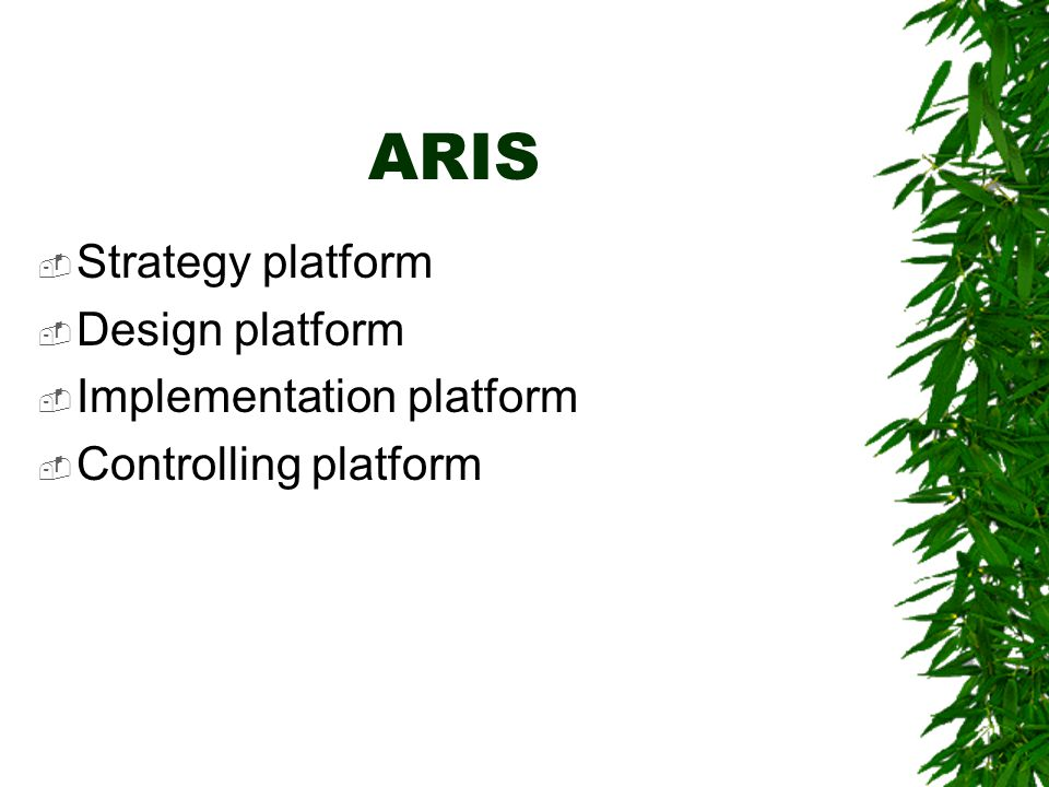 ARIS  Strategy platform  Design platform  Implementation platform  Controlling platform