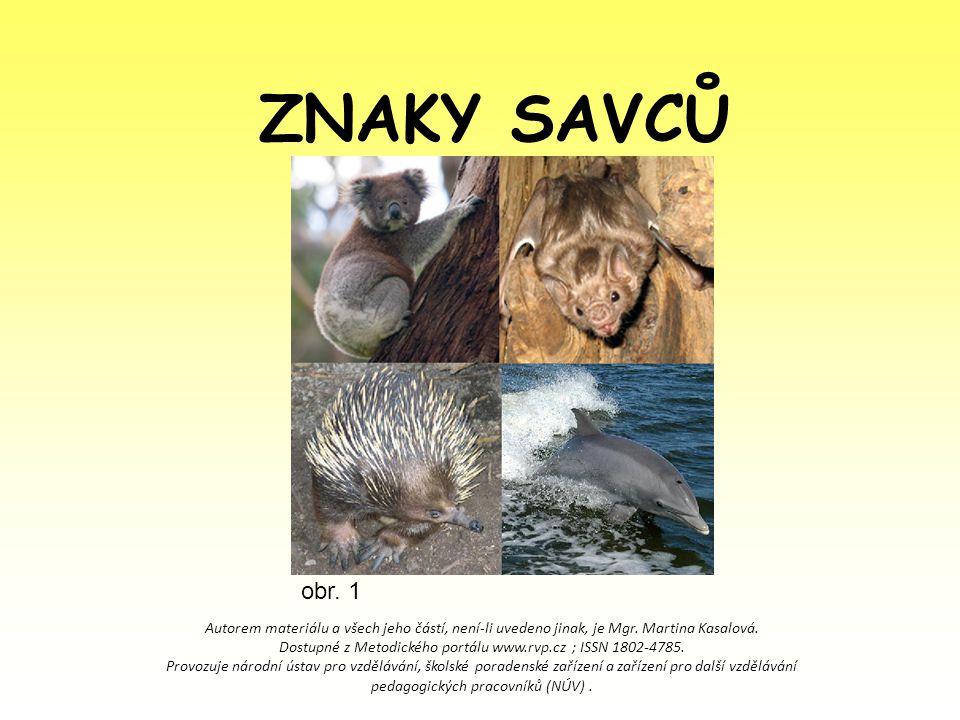 ZNAKY SAVCŮ Autorem materiálu a všech jeho částí, není-li uvedeno jinak, je Mgr. Martina Kasalová. Dostupné z Metodického portálu www.rvp.cz ; ISSN 18