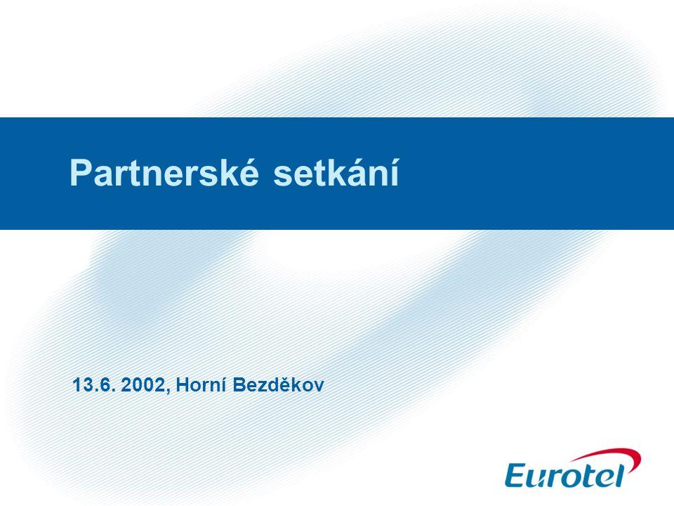 Partnerské setkání 13.6. 2002, Horní Bezděkov