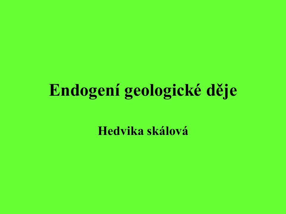 Endogení (vnitřní) geologické děje jsou vyvolané vnitřní enrgií země Většinu vnitřních geologických dějů nelze sledovat, jelikož se dějí pomalu a trvají dlouho.